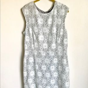 Banana Republic Shea Dress Mint Lace Gray Lining